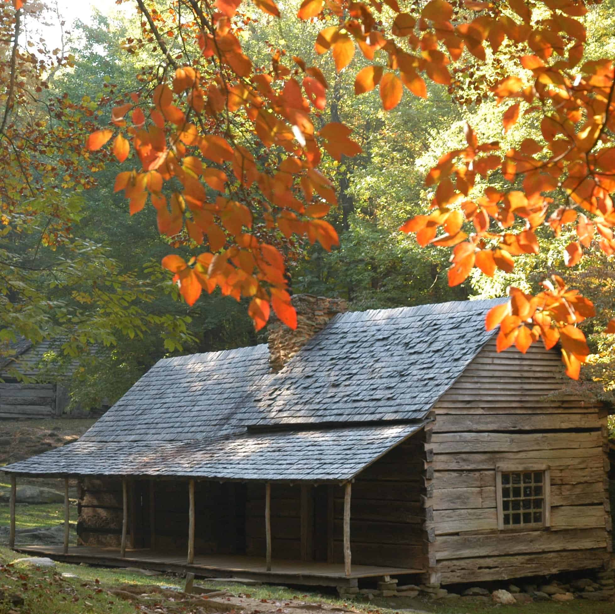 historic log buildings surrounded by fall colors in the Great Smoky Mountains National Park