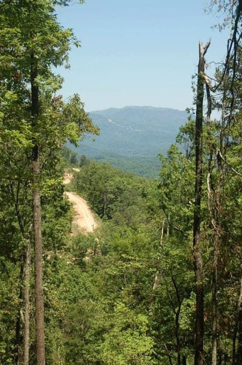 view of a dirt road through the Smoky Mountains