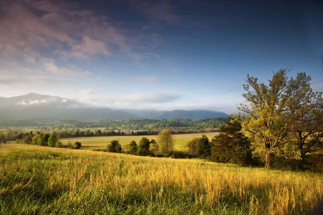 Enjoy A Relaxing Hike Through Cades Cove
