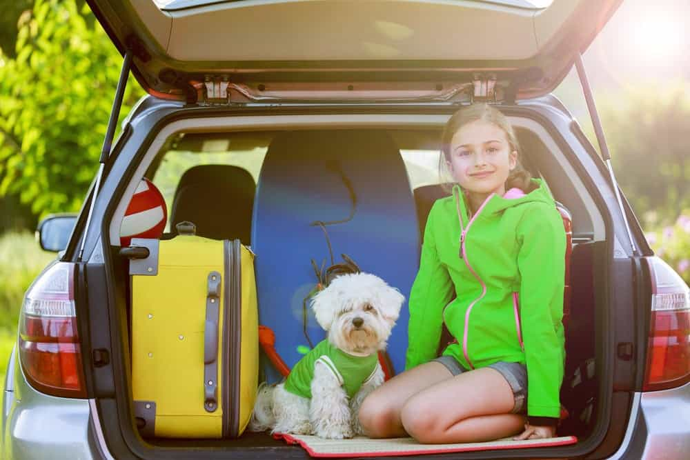 Girl and white dog in the back of a car packed for vacation