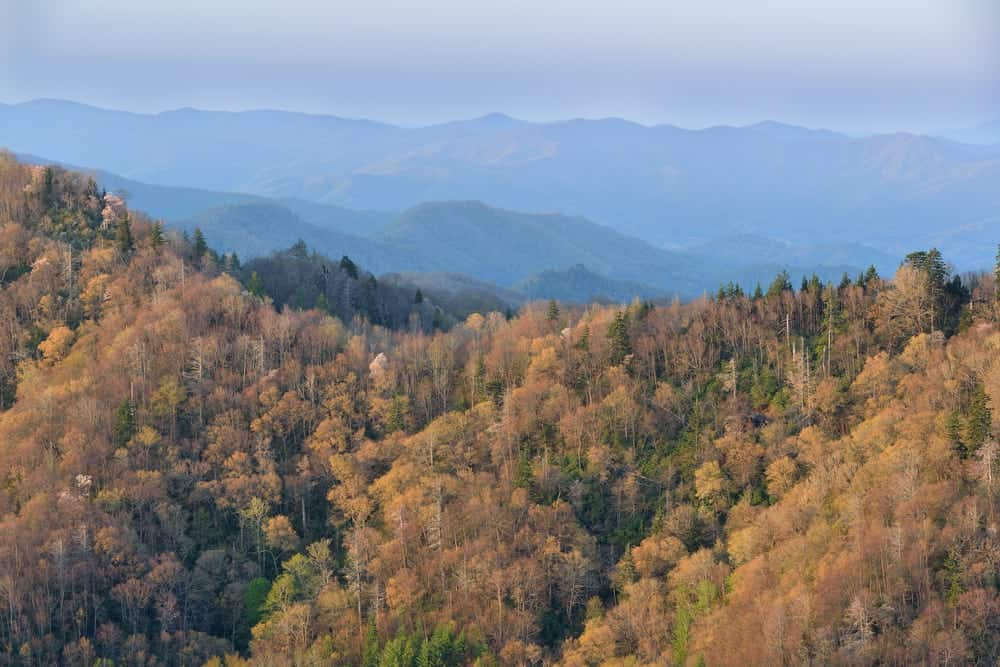 View of the Great Smoky Mountains National Park from Newfound Gap