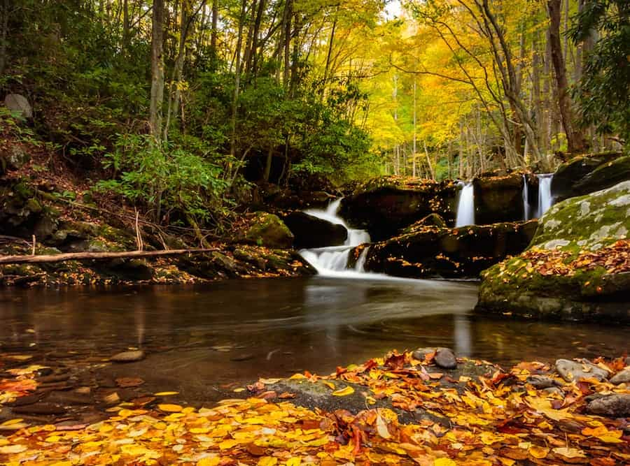Fall leaves at a waterfall near Gatlinburg