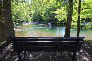 Little Pigeon River and within walking distance of the Greenbrier