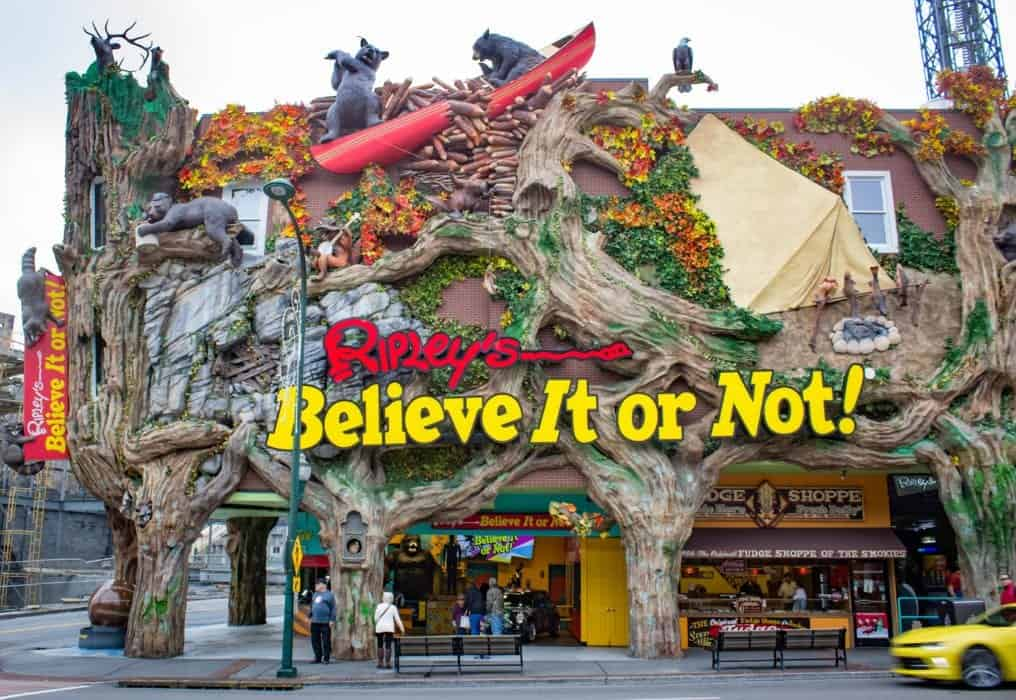 7 Popular Ripley's Attractions in Gatlinburg You Don't Want to Miss