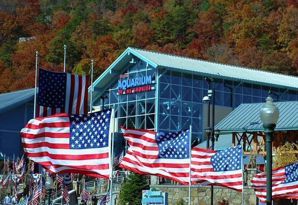 Veterans Day at Ripley's Aquarium of The Smokies in Gatlinburg TN
