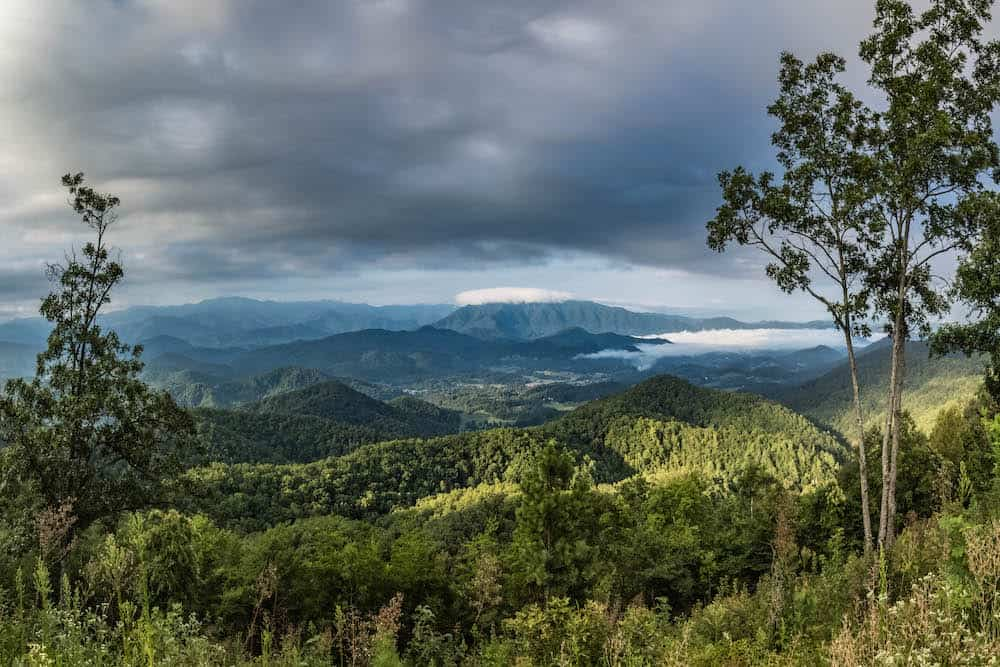 Top 5 Smoky Mountain Webcams You Can Watch from Home